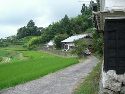 2008_008